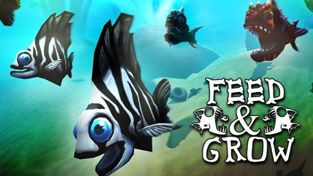 Feed-and-Grow-Fish